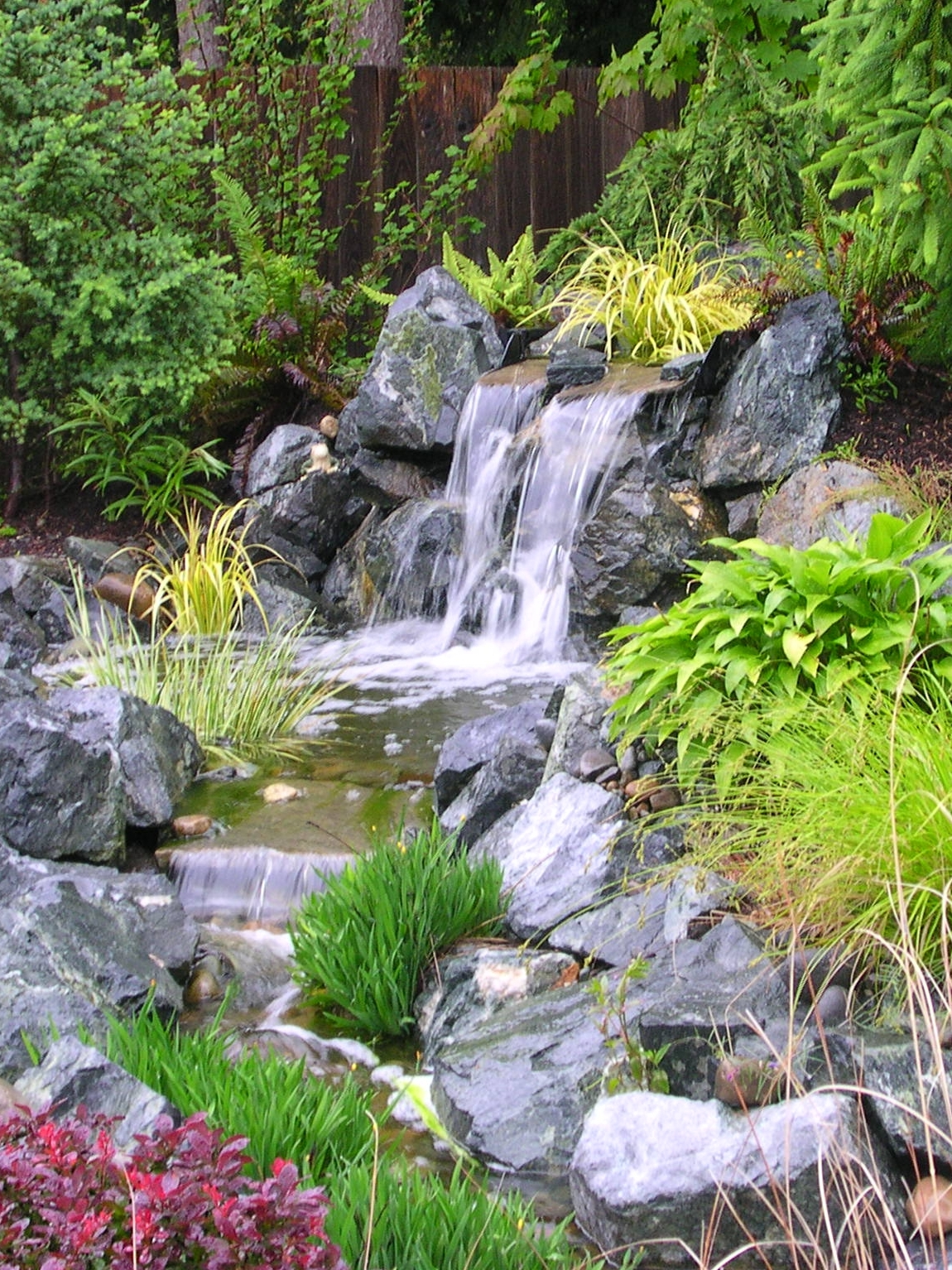 Natural Garden Pond Maintenance :  to a LowMaintenance Water Feature  Pondering with Mark The Pond Guy
